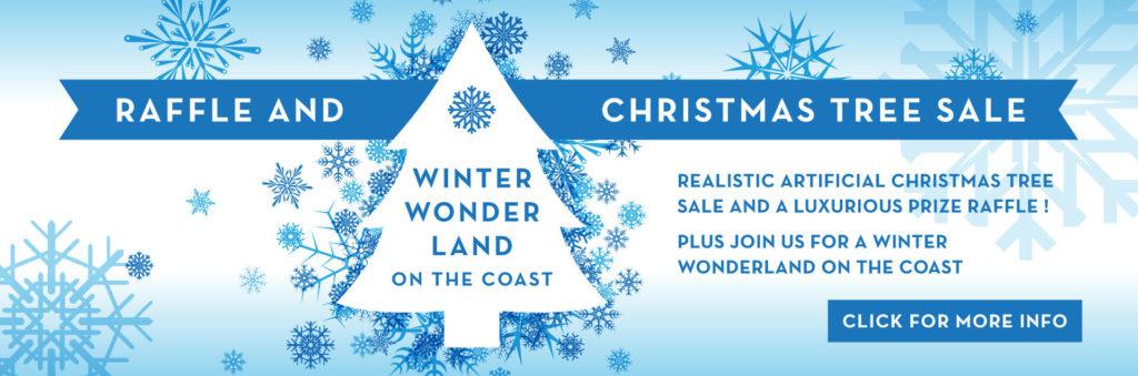https://bgccoastside.org/winter-wonderland-on-the-coast/